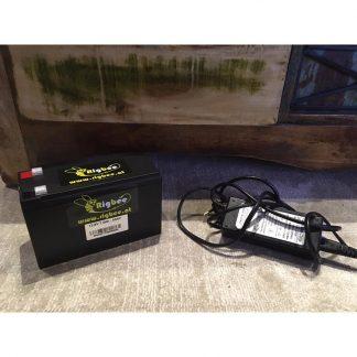 Rigbee Akkus & Batterien